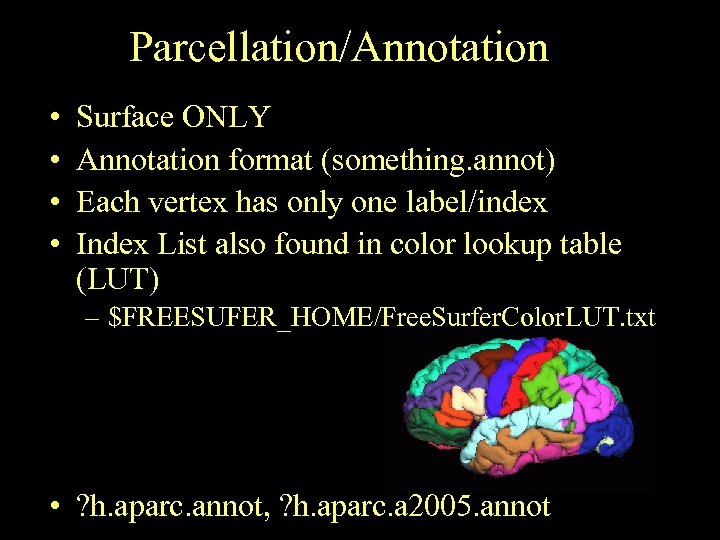 Parcellation/Annotation • • Surface ONLY Annotation format (something. annot) Each vertex has only one