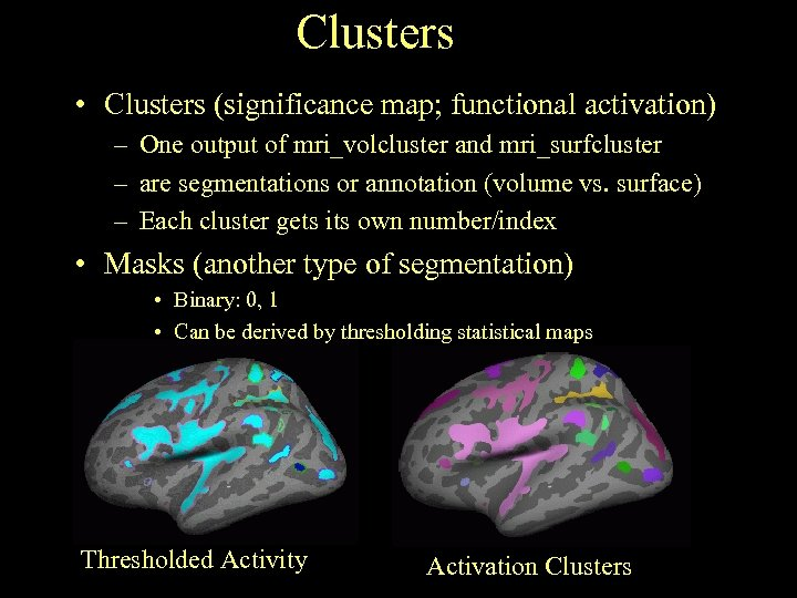 Clusters • Clusters (significance map; functional activation) – One output of mri_volcluster and mri_surfcluster