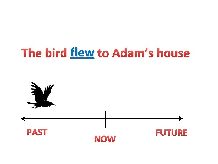 The bird flew to Adam's house PAST NOW FUTURE