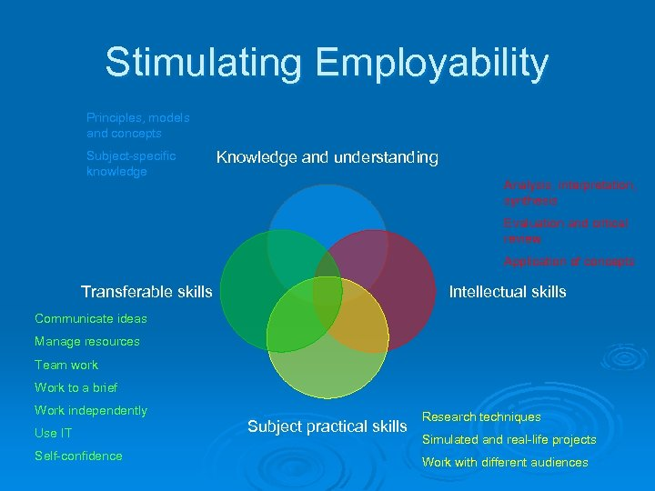 Stimulating Employability Principles, models and concepts Subject-specific knowledge Knowledge and understanding Analysis, interpretation, synthesis