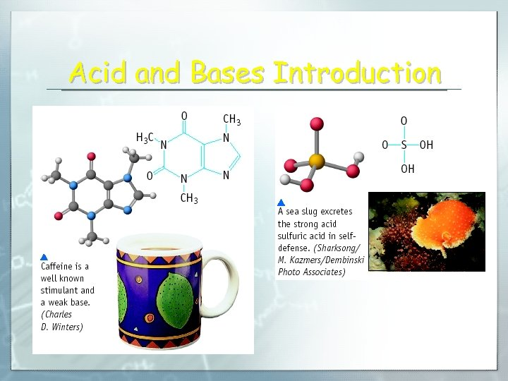 Acid and Bases Introduction