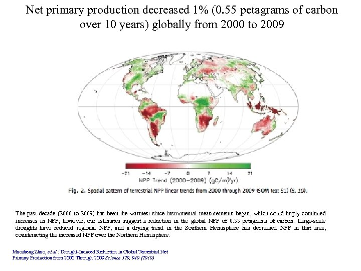 Net primary production decreased 1% (0. 55 petagrams of carbon over 10 years) globally