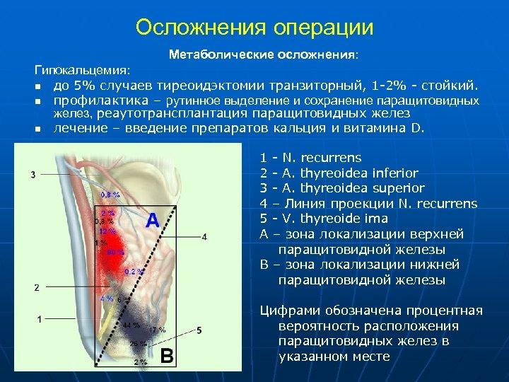 Осложнения операции Метаболические осложнения: Гипокальцемия: n до 5% случаев тиреоидэктомии транзиторный, 1 -2% -