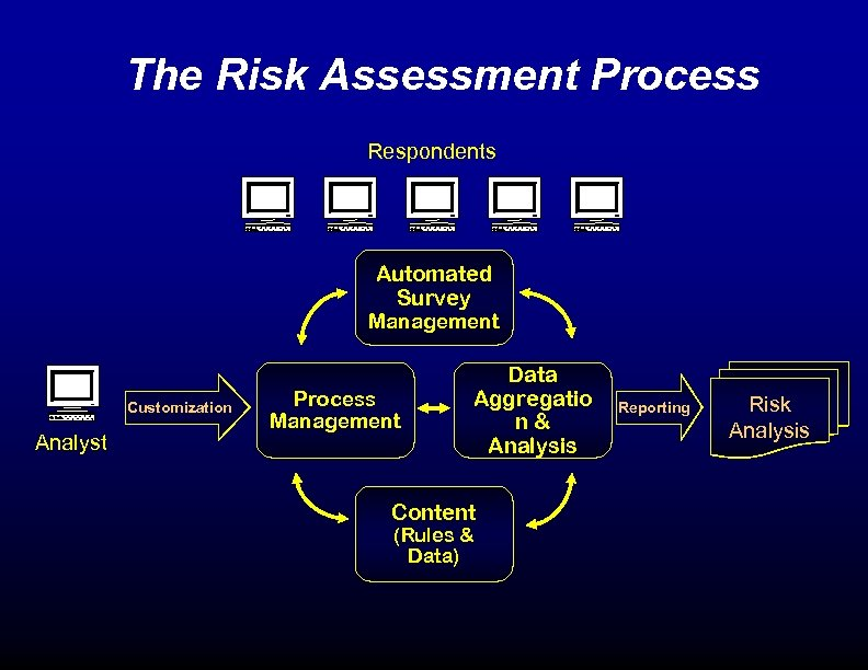 The Risk Assessment Process Respondents Automated Survey Management Customization Analyst Process Management Data Aggregatio