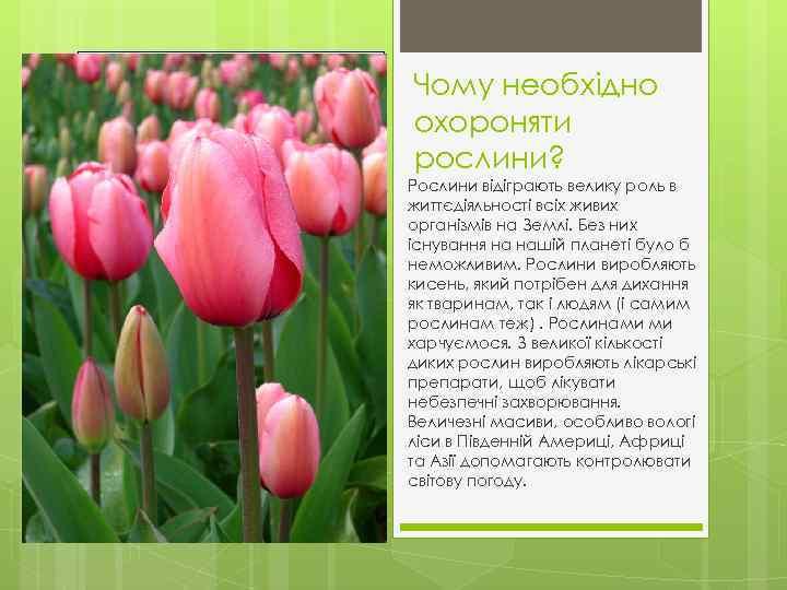 Чому необхідно охороняти рослини? Рослини відіграють велику роль в життєдіяльності всіх живих організмів на