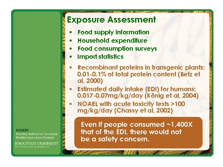 Exposure Assessment § § Food supply information Household expenditure Food consumption surveys Import statistics