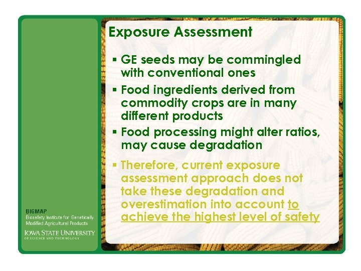 Exposure Assessment § GE seeds may be commingled with conventional ones § Food ingredients