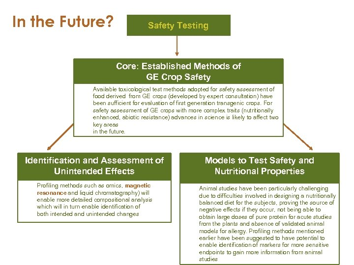 In the Future? Safety Testing Core: Established Methods of GE Crop Safety Available toxicological