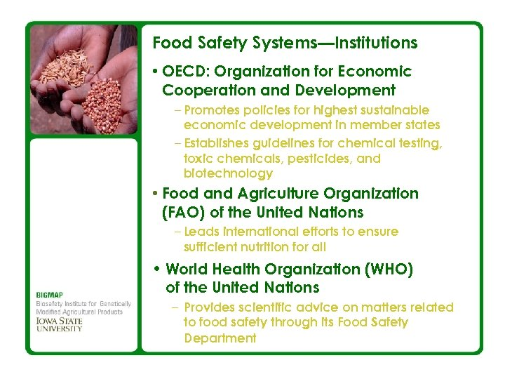 Food Safety Systems—Institutions • OECD: Organization for Economic Cooperation and Development – Promotes policies
