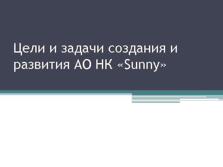 Цели и задачи создания и развития АО НК «Sunny»
