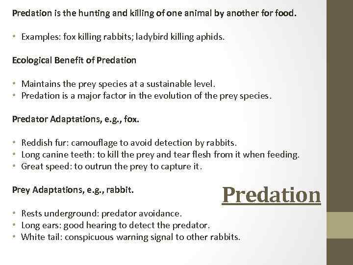 Predation is the hunting and killing of one animal by another food. • Examples: