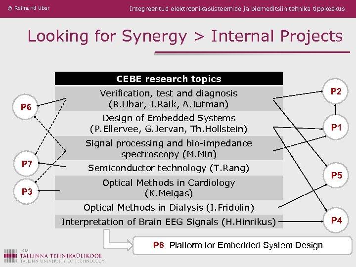 © Raimund Ubar Integreeritud elektroonikasüsteemide ja biomeditsiinitehnika tippkeskus Looking for Synergy > Internal Projects