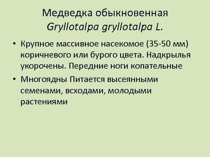 Медведка обыкновенная Gryllotalpa gryllotalpa L. • Крупное массивное насекомое (35 -50 мм) коричневого или