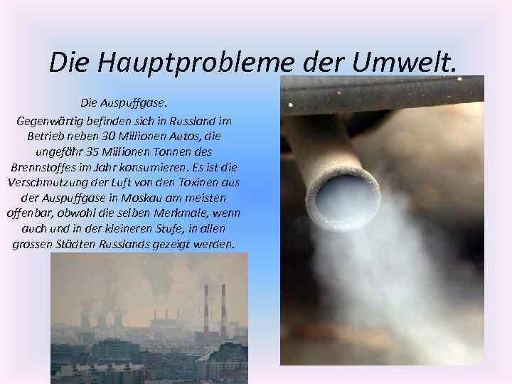 Die Hauptprobleme der Umwelt. Die Auspuffgase. Gegenwärtig befinden sich in Russland im Betrieb neben