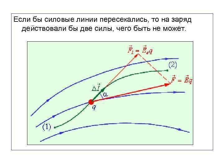 Если бы силовые линии пересекались, то на заряд действовали бы две силы, чего быть
