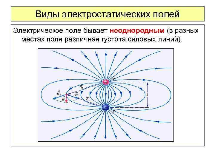 Виды электростатических полей Электрическое поле бывает неоднородным (в разных местах поля различная густота силовых