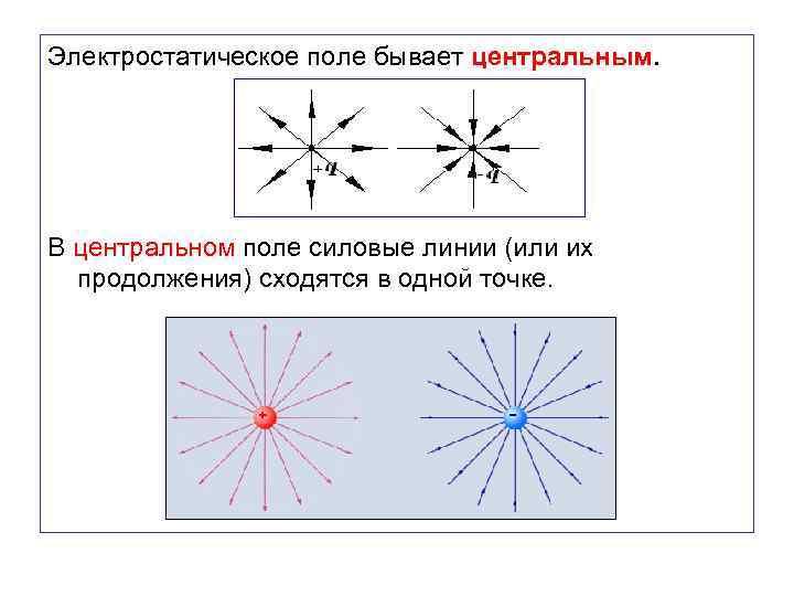 Электростатическое поле бывает центральным. В центральном поле силовые линии (или их продолжения) сходятся в