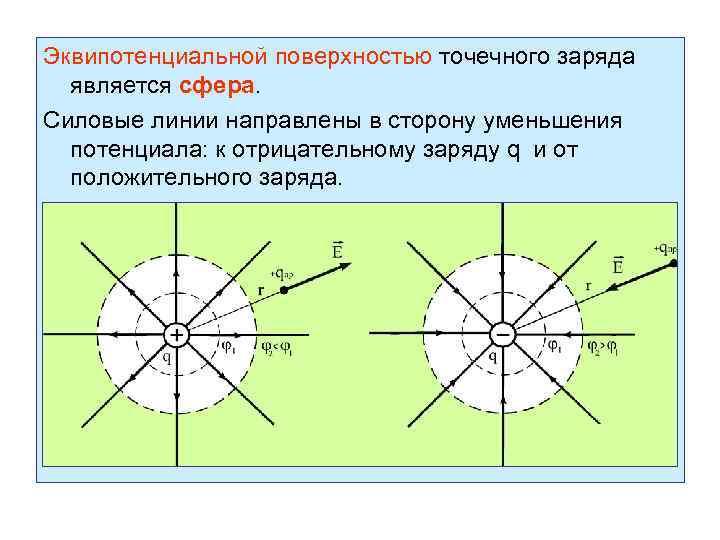 Эквипотенциальной поверхностью точечного заряда является сфера. Силовые линии направлены в сторону уменьшения потенциала: к