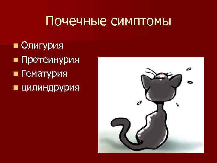Почечные симптомы n Олигурия n Протеинурия n Гематурия n цилиндрурия