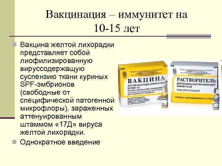 Вакцинация – иммунитет на 10 -15 лет n Вакцина желтой лихорадки представляет собой лиофилизированную