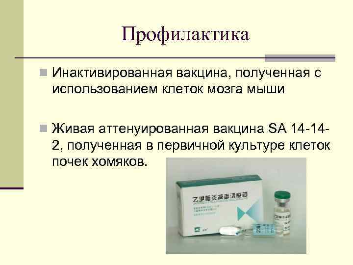 Профилактика n Инактивированная вакцина, полученная с использованием клеток мозга мыши n Живая аттенуированная вакцина