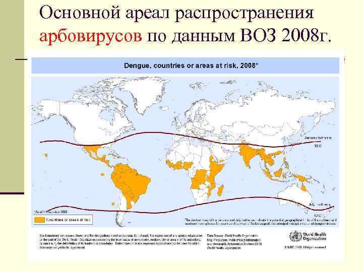 Основной ареал распространения арбовирусов по данным ВОЗ 2008 г.