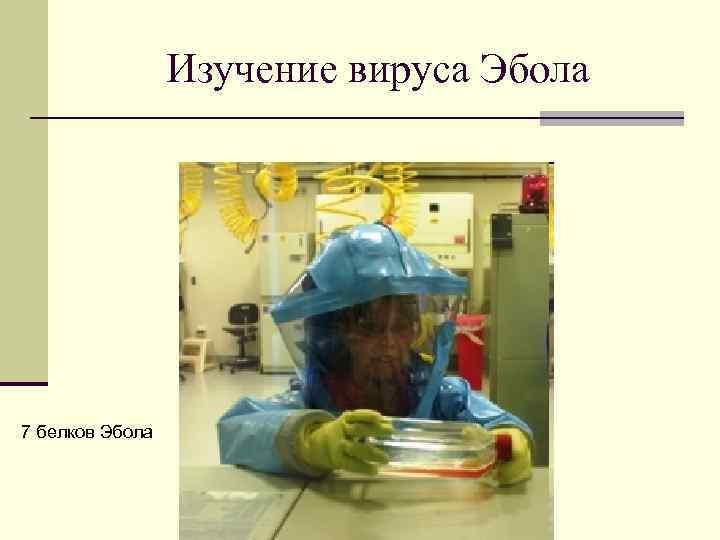 Изучение вируса Эбола 7 белков Эбола