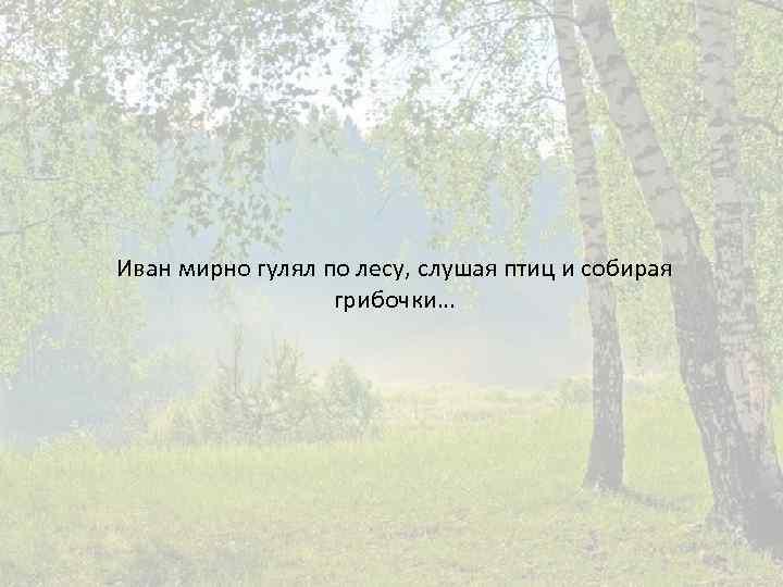 Иван мирно гулял по лесу, слушая птиц и собирая грибочки…