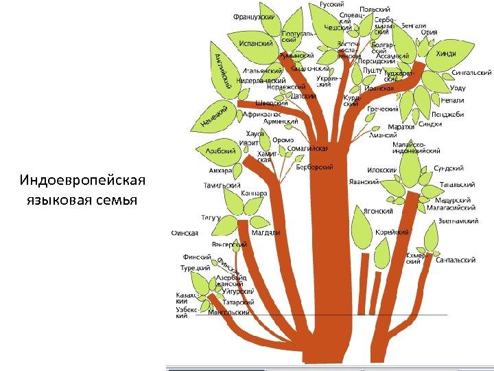 Индоевропейская языковая семья
