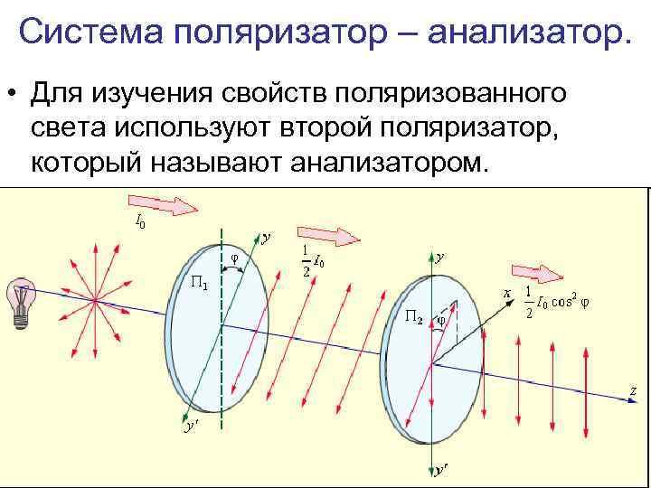 Система поляризатор – анализатор. • Для изучения свойств поляризованного света используют второй поляризатор, который