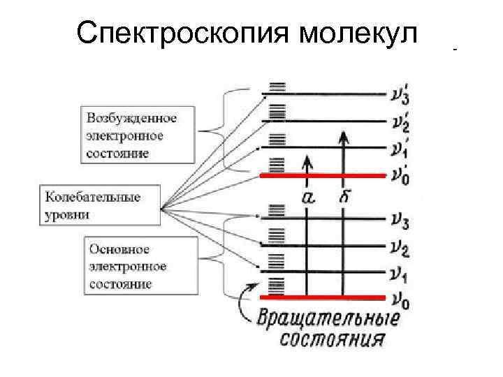 Спектроскопия молекул