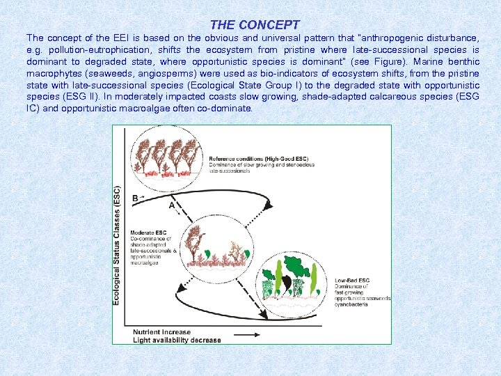 THE CONCEPT The concept of the EEI is based on the obvious and universal