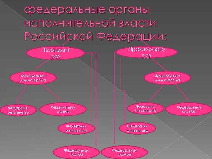 федеральные органы исполнительной власти Российской Федерации: Президент рф Правительсто рф Федеральное министерства Федеральн ое