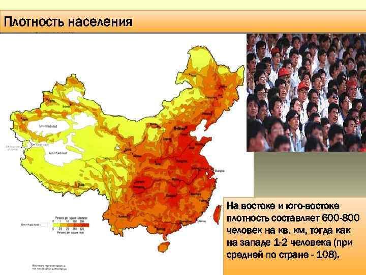 Плотность населения На востоке и юго-востоке плотность составляет 600 -800 человек на кв. км,