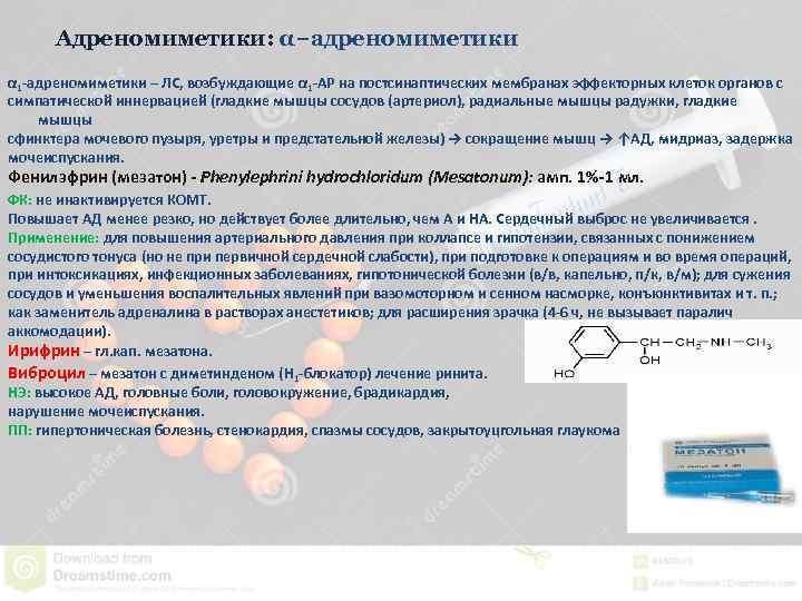 Адреномиметики: α−адреномиметики α 1 -адреномиметики – ЛС, возбуждающие α 1 -АР на постсинаптических мембранах
