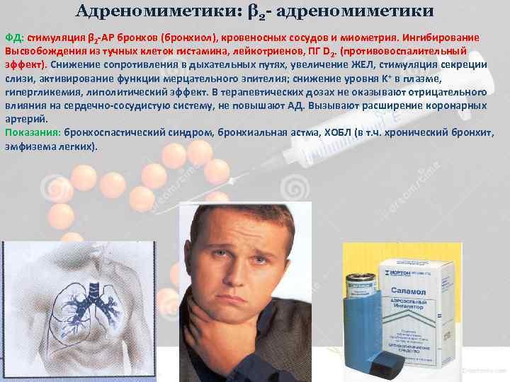 Адреномиметики: β 2 - адреномиметики ФД: стимуляция β 2 -АР бронхов (бронхиол), кровеносных сосудов