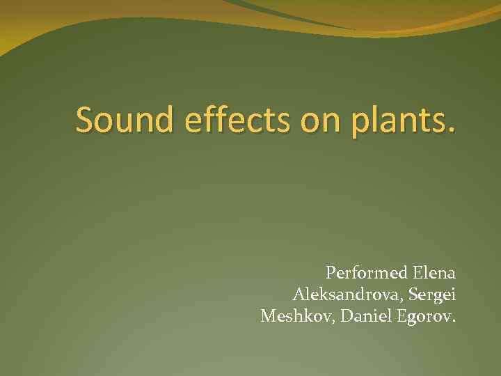 Sound effects on plants. Performed Elena Aleksandrova, Sergei Meshkov, Daniel Egorov.