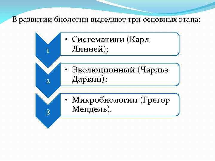 В развитии биологии выделяют три основных этапа: 1 • Систематики (Карл Линней); 2 •