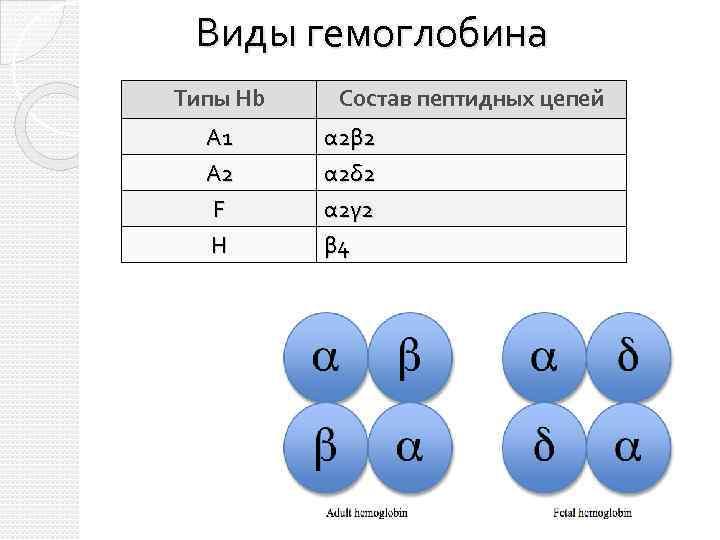 Виды гемоглобина Типы Hb Состав пептидных цепей A 1 А 2 α 2 β