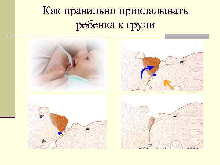 Как правильно прикладывать ребенка к груди