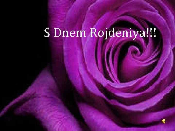 S Dnem Rojdeniya!!!