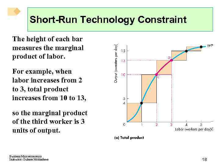 Short-Run Technology Constraint The height of each bar measures the marginal product of labor.