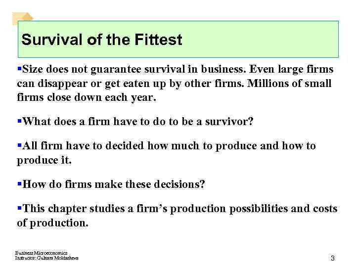 Survival of the Fittest §Size does not guarantee survival in business. Even large firms