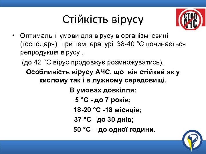 Стійкість вірусу • Оптимальні умови для вірусу в організмі свині (господаря): при температурі 38