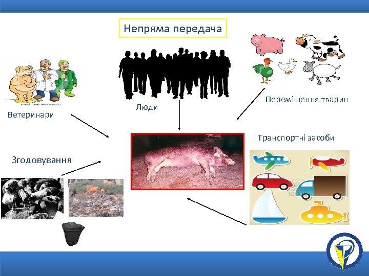 Непряма передача Ветеринари Люди Переміщення тварин Транспортні засоби Згодовування