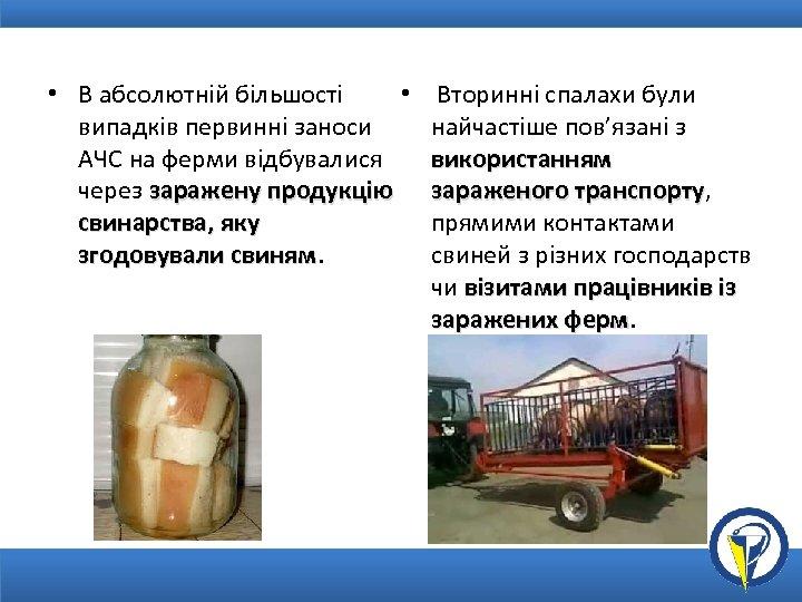 • • В абсолютній більшості випадків первинні заноси АЧС на ферми відбувалися через