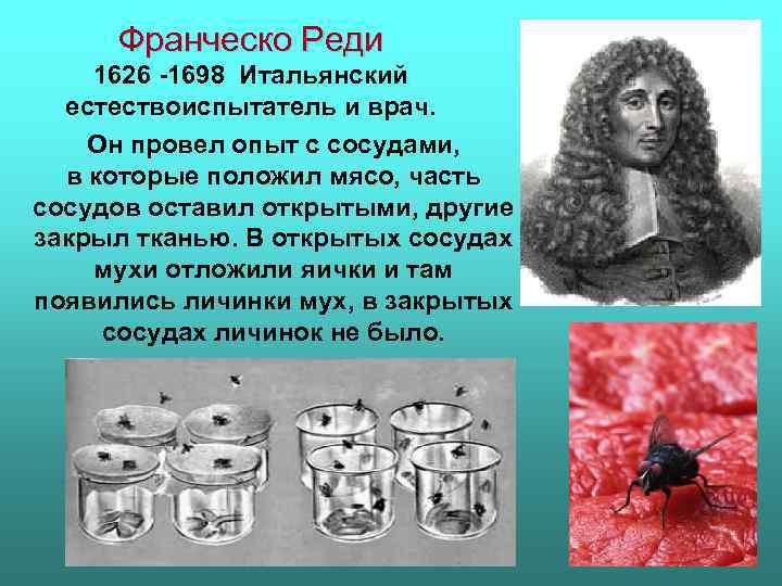 Франческо Реди 1626 -1698 Итальянский естествоиспытатель и врач. Он провел опыт с сосудами, в