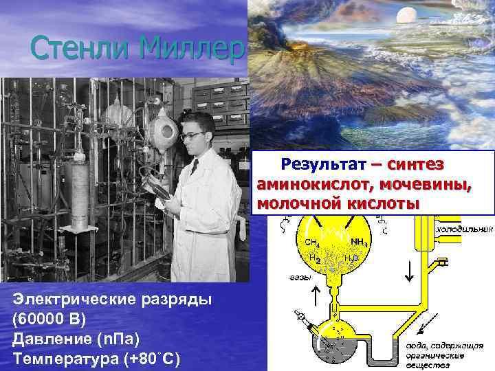 Стенли Миллер Результат – синтез аминокислот, мочевины, молочной кислоты Электрические разряды (60000 В) Давление