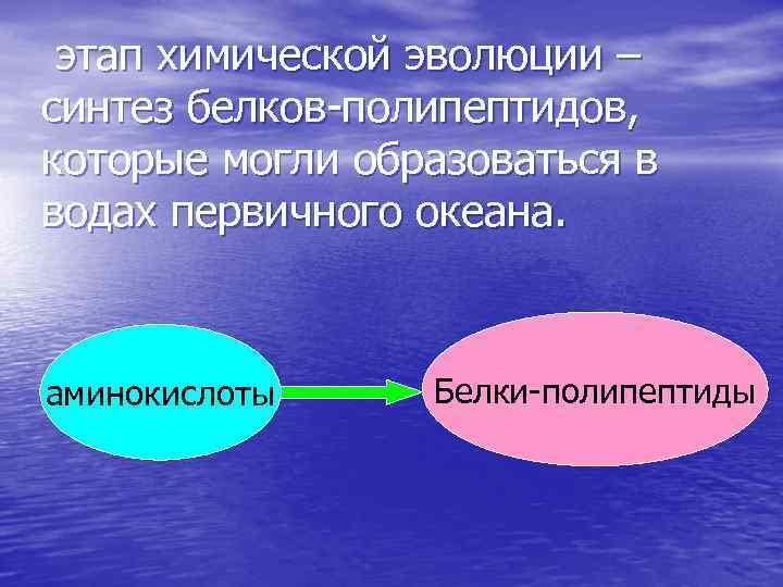 этап химической эволюции – синтез белков-полипептидов, которые могли образоваться в водах первичного океана.