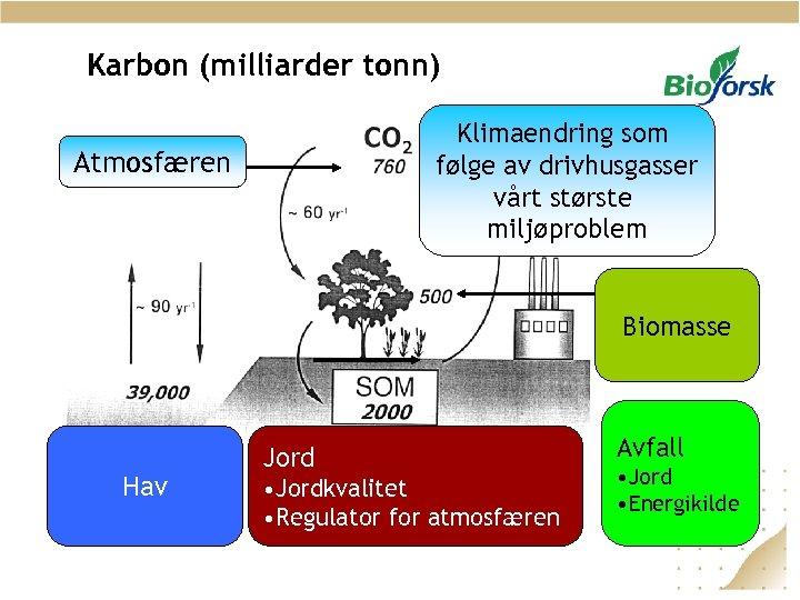 Karbon (milliarder tonn) Klimaendring som følge av drivhusgasser vårt største miljøproblem Atmosfæren Biomasse Hav